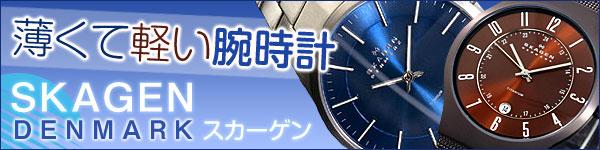 SKAGEN スカーゲン 腕時計