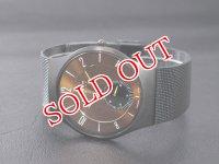 SKAGEN スカーゲン 腕時計 カーボンダイヤル チタン 805XLTBD